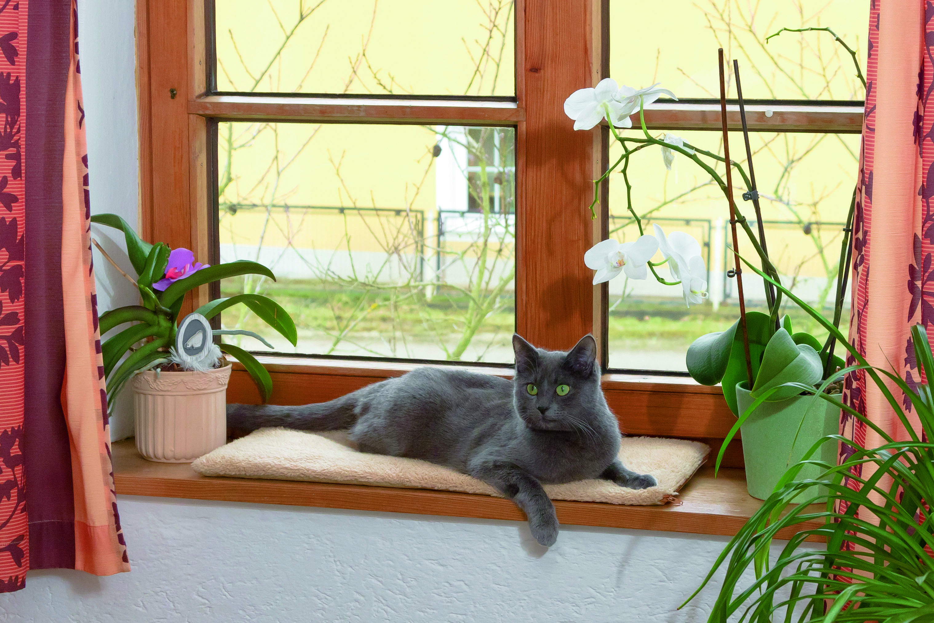 Kerbl Fensterliegekissen 60 x 26 x 2cm selbstwärmend Liege Kissen Fensterbank 2